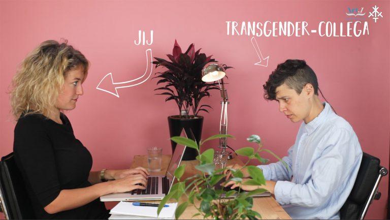 Dinsdag Quizdag artikel 1 midden nederland en transketeers still1
